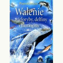 Walenie - wieloryby, delfiny i morświny. Poszukiwacze