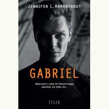 Gabriel. Cykl Moonlight. Tom 2